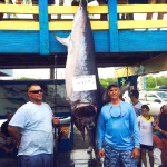 Monster Swordfish Catch