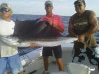 aug sailfish.jpg
